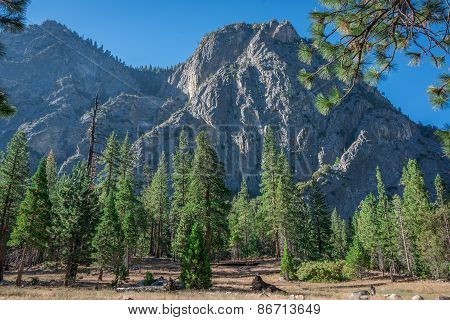 Mountain View In Sequoia National Forest