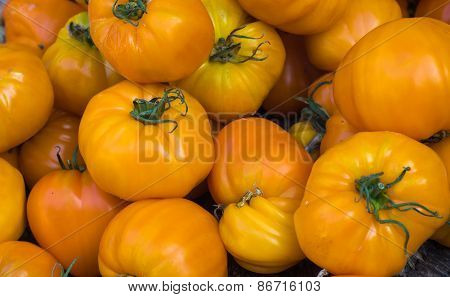 Yellow Tomatoes In The Market