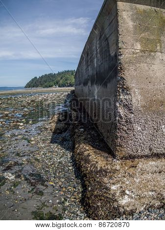 Seawall At Low Tide