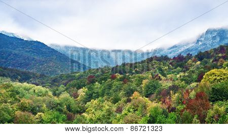 Mountains In Crimea. Green Leaves And Snow