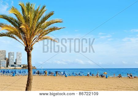 a view of Levante Beach, in Benidorm, Spain, with blurred vacationers hanging out on the sand in the background