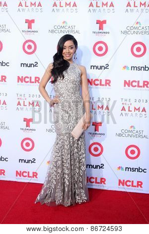 LOS ANGELES - SEP 27:  Aimee Garcia at the 2013 ALMA Awards - Arrivals at Pasadena Civic Auditorium on September 27, 2013 in Pasadena, CA