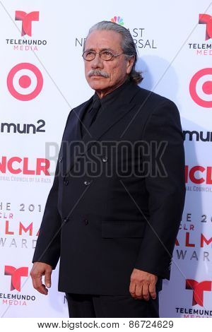 LOS ANGELES - SEP 27:  Edward James Olmos at the 2013 ALMA Awards - Arrivals at Pasadena Civic Auditorium on September 27, 2013 in Pasadena, CA