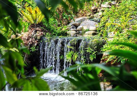 Waterfall In Phuket Butterfly Garden