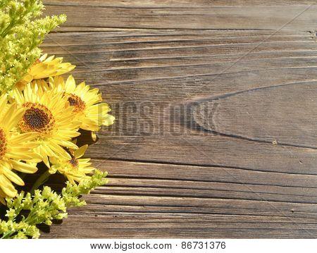 Yellow Daisies Wood Background