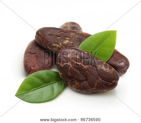 Cacao beans isolated on white background