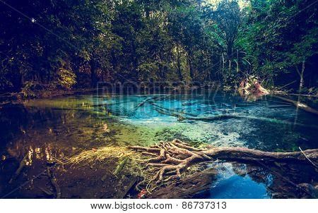 Emerald blue Pool. Krabi, Thailand.