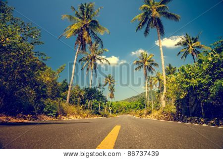 Nice asfalt road with palm trees against the blue sky and cloud