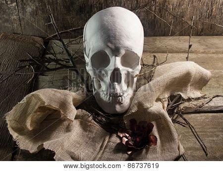 Skull with flower.