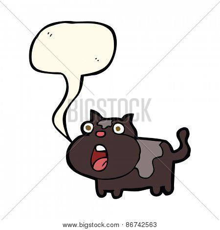 cartoon shocked cat with speech bubble