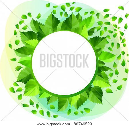 Round blank frame with green fresh leaves