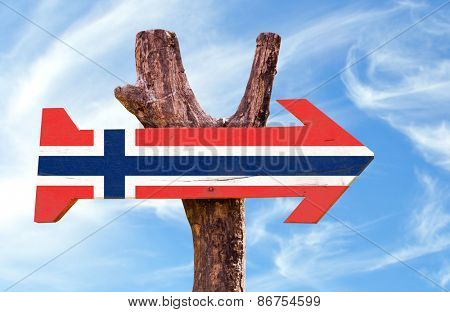 Norway Flag wooden sign with sky background