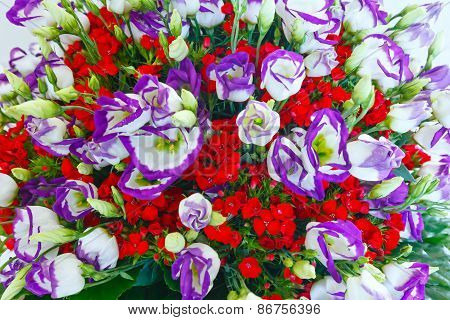 Big Wonderful Flowers Bouquet