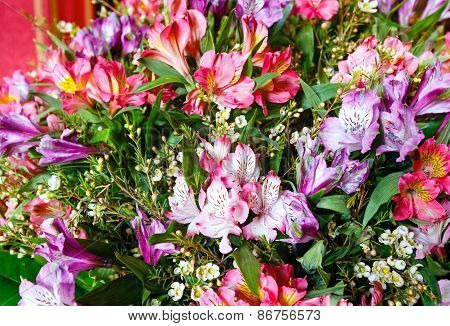 Big Multicolor  Alstroemeria  Flowers Bouquet
