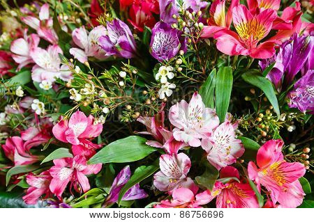 Big Multicolor Alstroemeria  Flowers Bouquet.