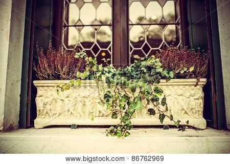 Flowerbed On Windowsill  Outdoor