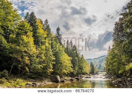 Carpathian Mountain River