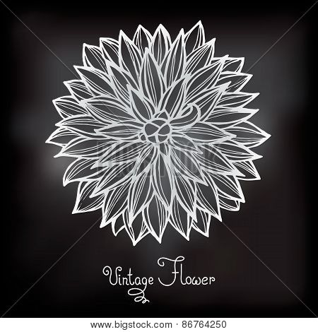 Card with beautiful flower dahlia.