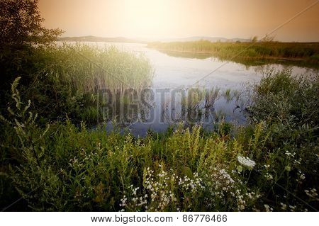 River in summer at sunrise