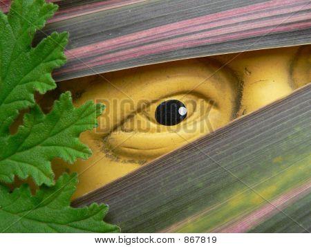 An Eye On The Garden