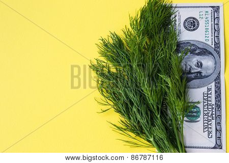 Greenery dill and 100 dollars on yellow background, copy space