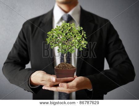 Man holding plant in hand