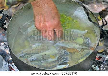 Cooking Fish-soup