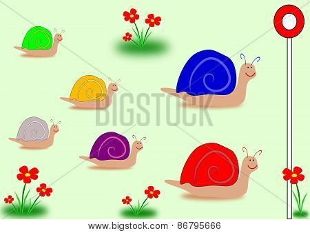Snail Race UK general election colours