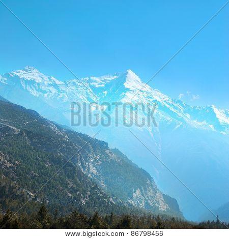 Tibetan Road With Firs In Himalayan Mountain