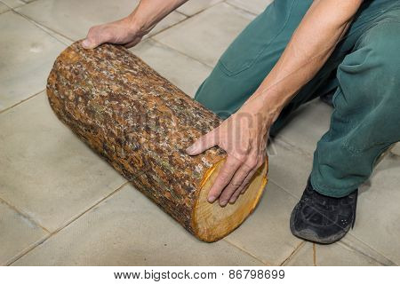 Billet Of Logs In The Hands Of A Carpenter