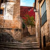 stock photo of cobblestone  - Stairs detail of narrow cobblestone alley in Caceres  - JPG