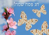 picture of piety  - flowering peach tree branch and three butterflies made from matzo on the background of bright blue sky with the inscription in Hebrew  - JPG