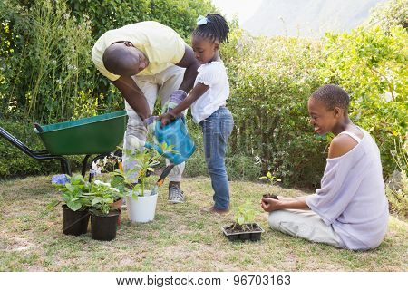 Happy smiling family plant a flowers together in a garden
