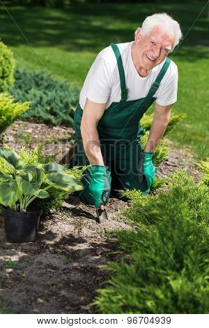 Smiling Retiree Caring About Plants