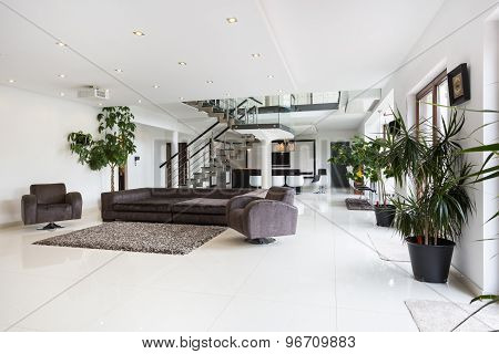 Spacious Designer Room