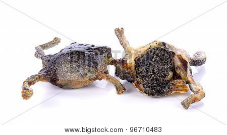 Fried Bullfrog Isolated On The White Background