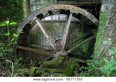 Water Wheel at Cockington