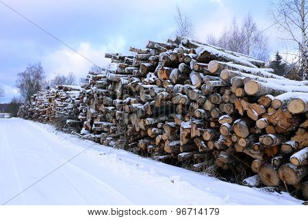 Winter timber harvesting