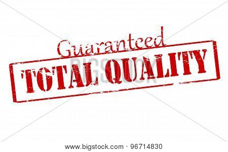 Rubber stamp with text guaranteed total quality inside vector illustration