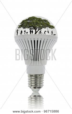 Led Lights Save Energy And Be Environmentally Friendly.