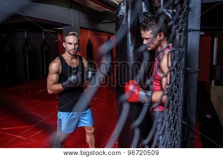 Portrait of boxing men training on a pushing ball