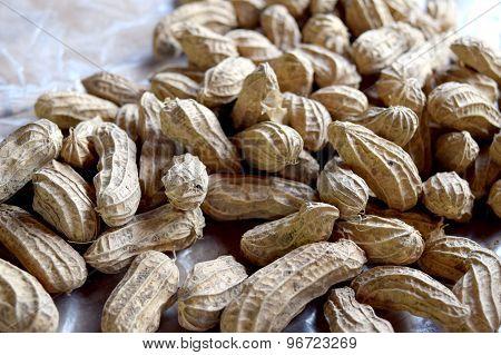 Close up groundnut or monkey nut or peanut