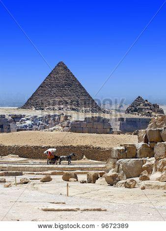 Egyptian Demolitions