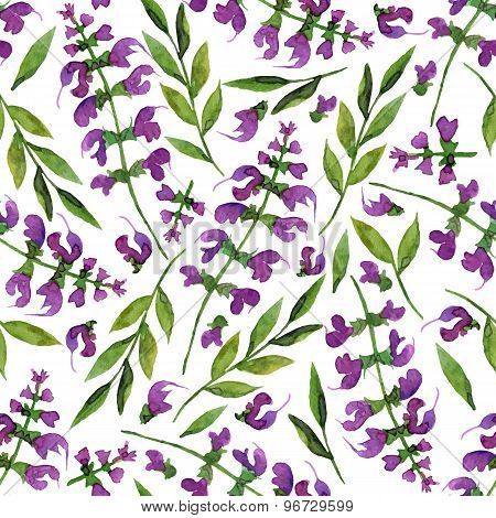 Seamless Vector Pattern With Watercolor Herbs