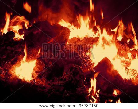 Embers burning in fire at night closeup