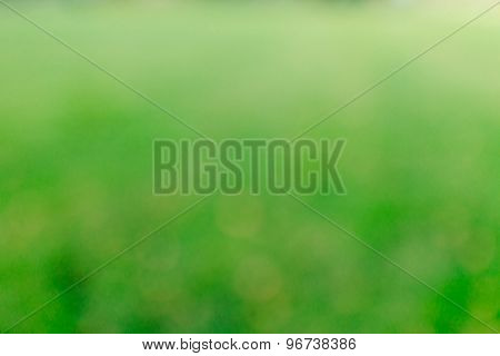 Vibrant blurred background.