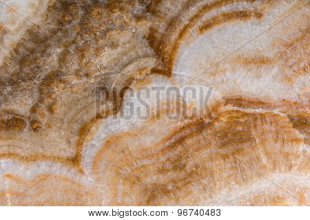 Texture Of Natural Marble
