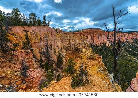 Ponderosa Canyon Bryce National Park