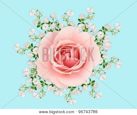 Pink And White Roses On Pastel Blue