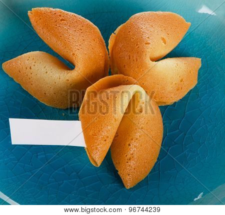 Fortune Cookies  On   Blue Plate.
